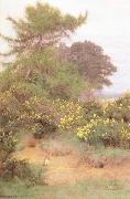 George Marks At the Edge of Shere Heath (mk46) oil painting artist